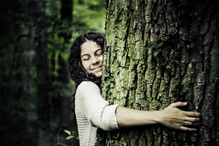 «Aussi serein qu'un arbre»: découvrez le tout dernier ouvrage d'Emeric Lebreton